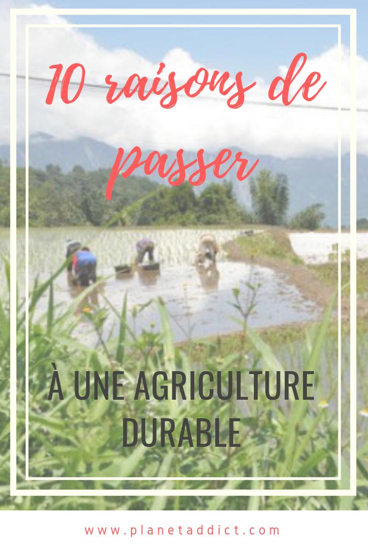 Pinterest-agriculture durable