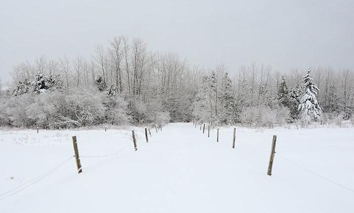 Equitation Québec: Auberge Andromede 6