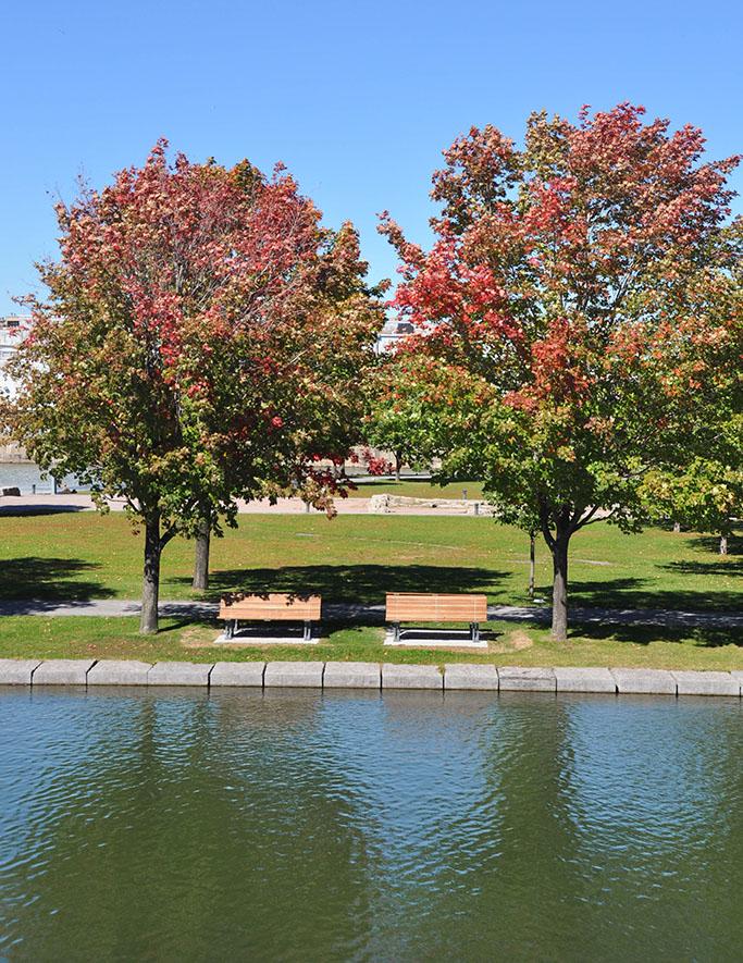 PVT Canada: Ville de Montréal