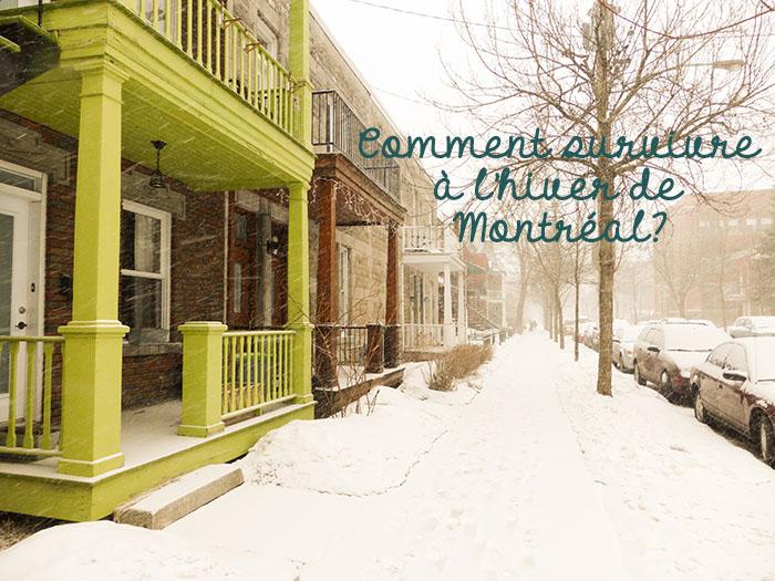 20140322 hiver 006 - Comment survivre à l'hiver de Montréal ?