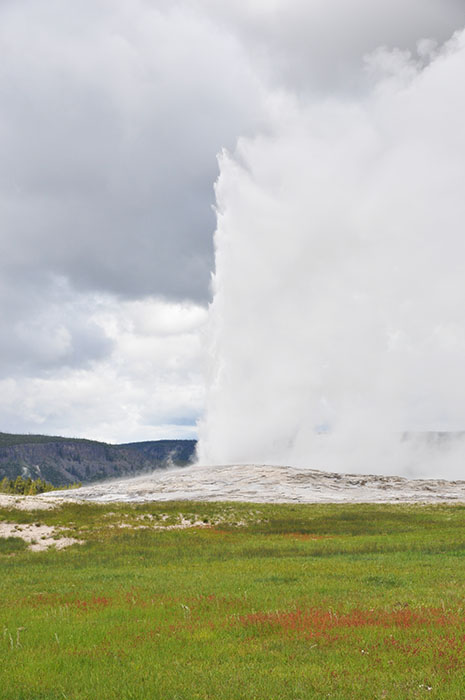 Yellowstone National Park : Old Faithful