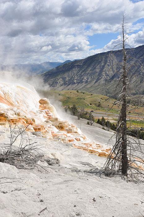 Yellowstone National Park : Mammoth Hot Springs