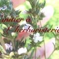 image 120x120 - {Mission n°1} S'initier à l'herboristerie