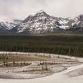 20140523 Rocheuses et Vancouver 126 120x120 - Les Rocheuses Canadiennes et ma rencontre avec les ours