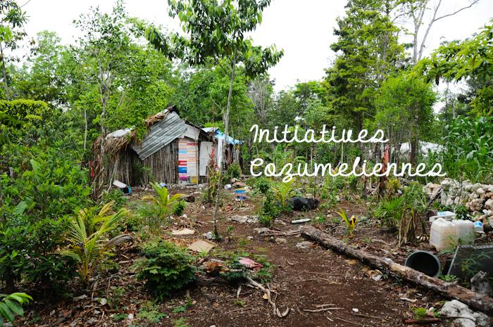 initiatives à Cozumel