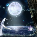 Fairy moonlight