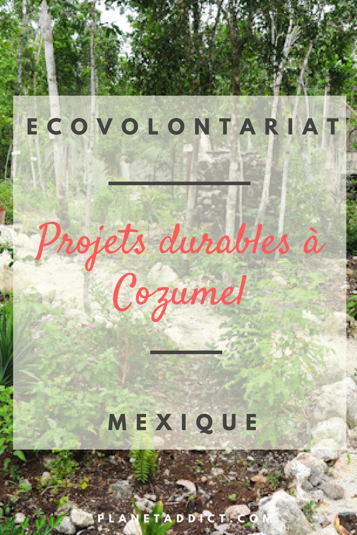Pinterest-projets durables