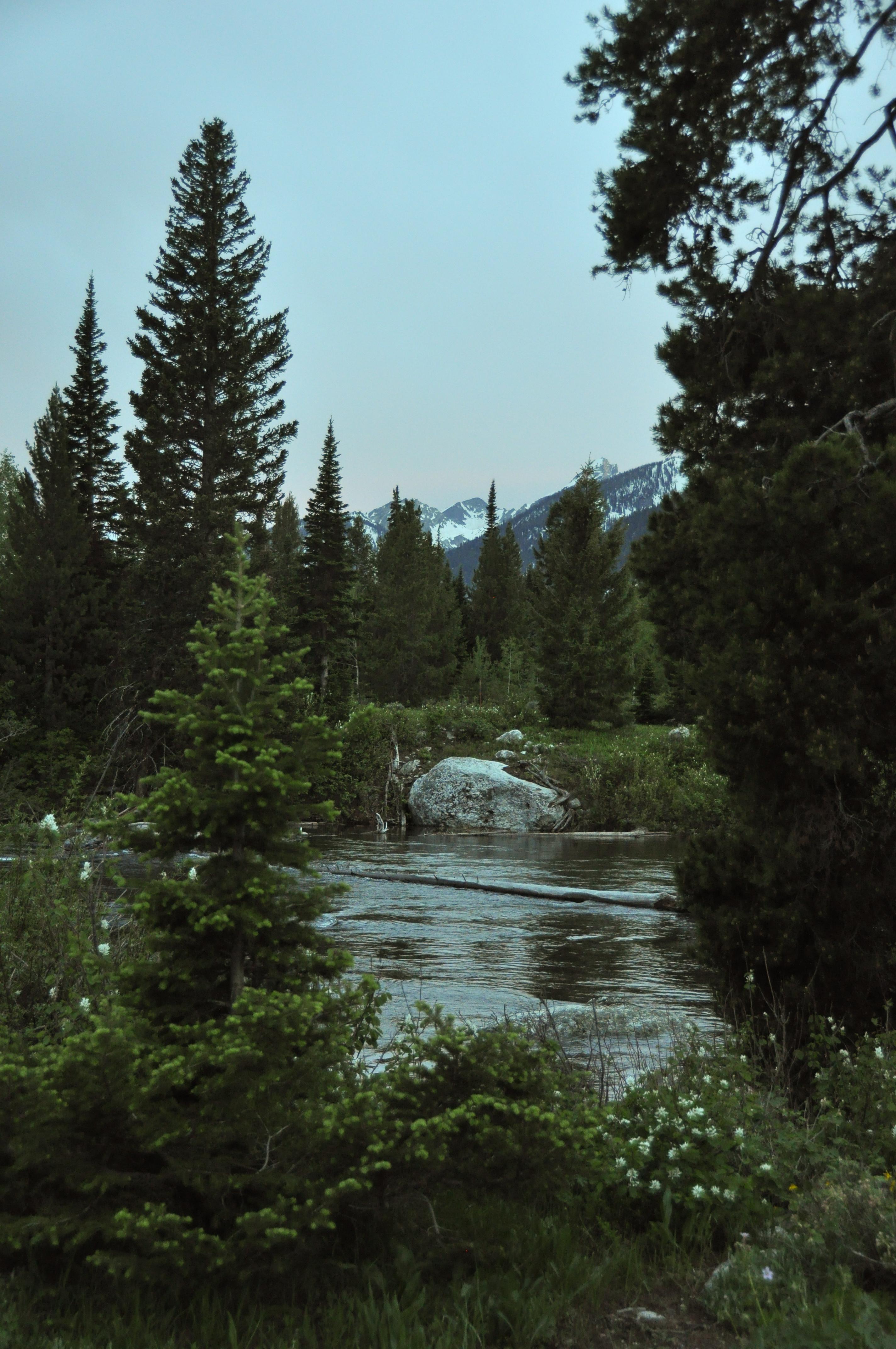 20140614-Yellowstone-005
