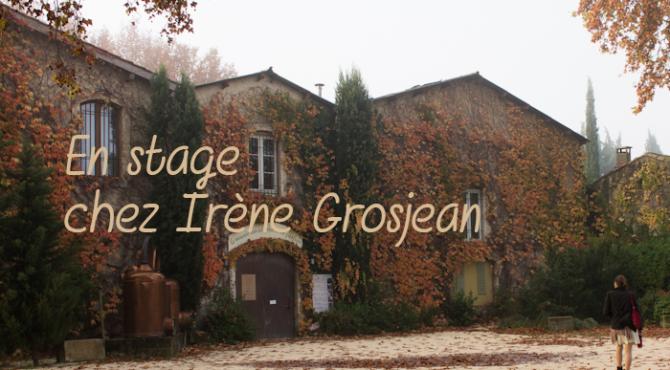 stage Irène Grojean 2