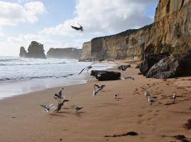 Great Ocean Road 2 19 268x200 - Retour sur voyage (2011) : 3 Road Trip à ne pas manquer en Australie