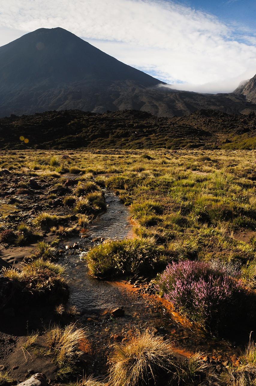 Tongariro Trek_E (3)