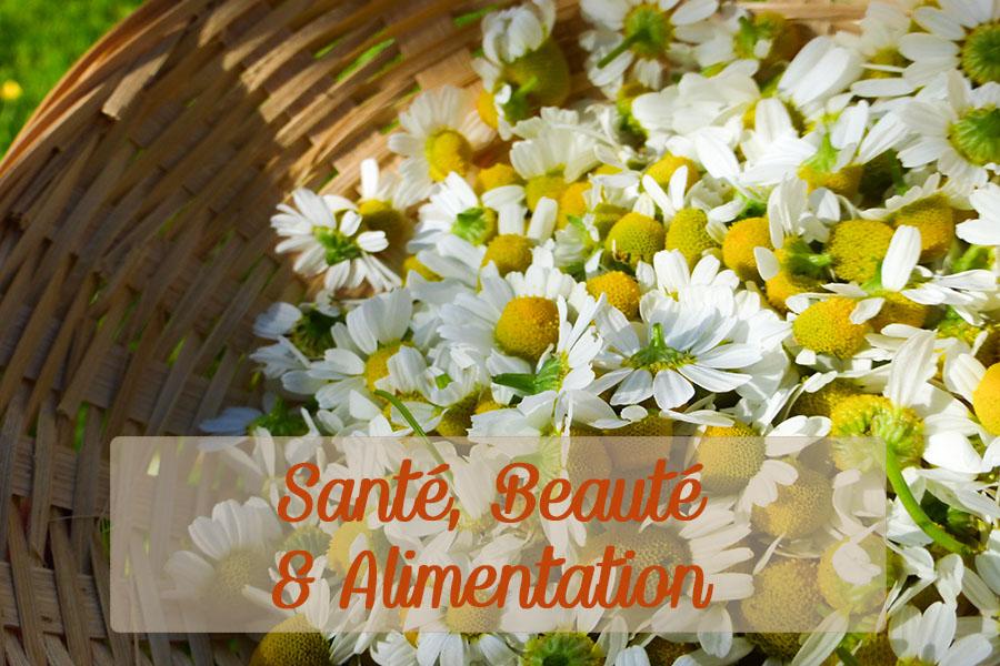 Santé_beauté_alimentation