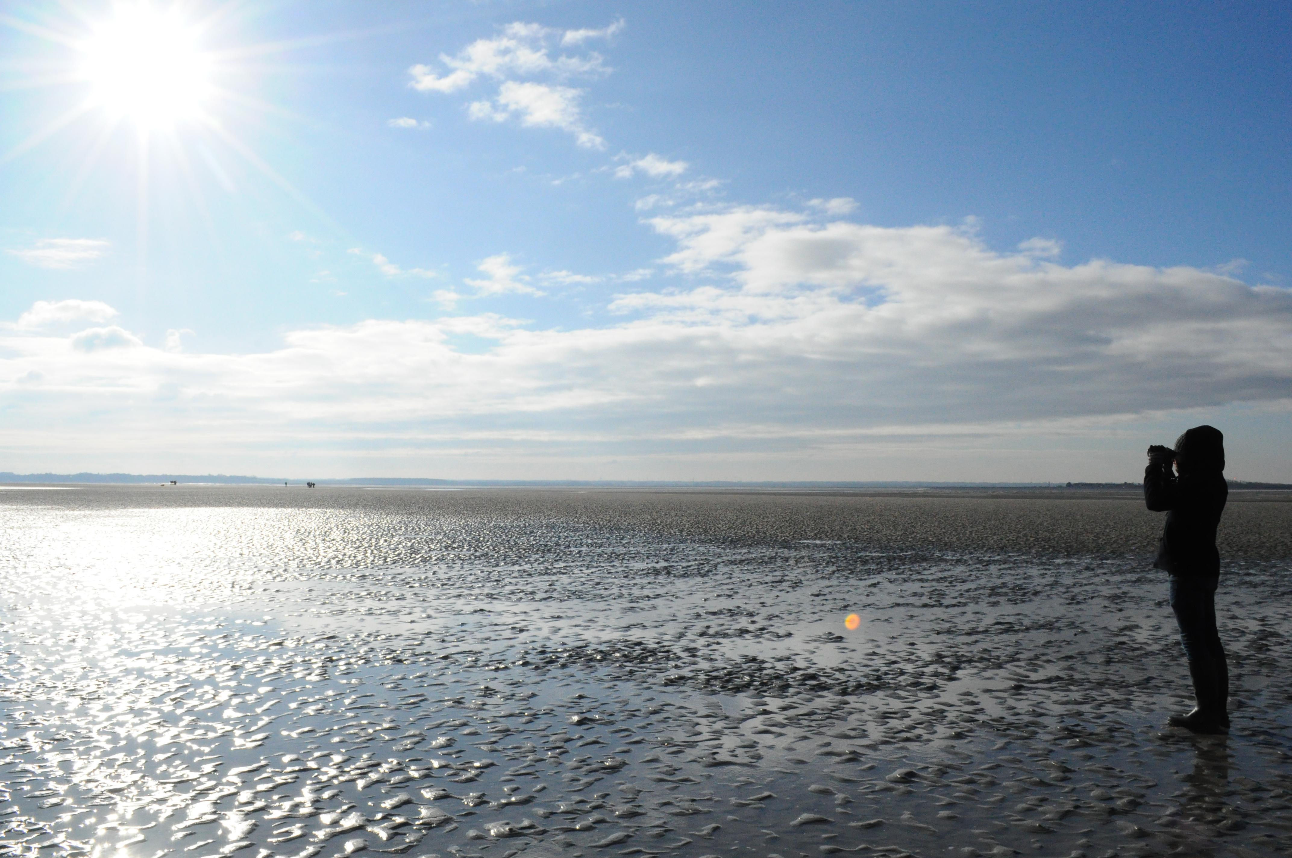DSC 0856 - Que faire en Baie de Somme ?