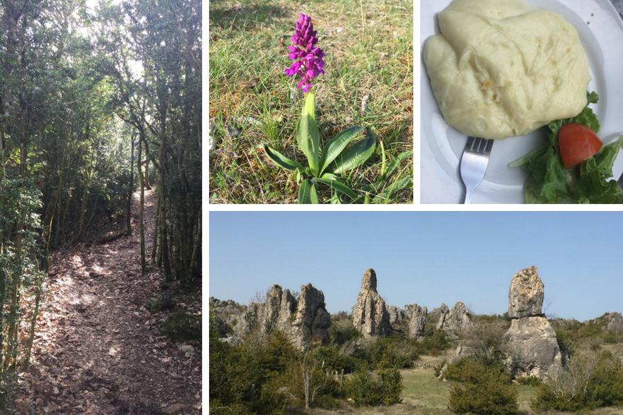 20 - Mon coup de cœur pour Millau, en Aveyron #WAT18