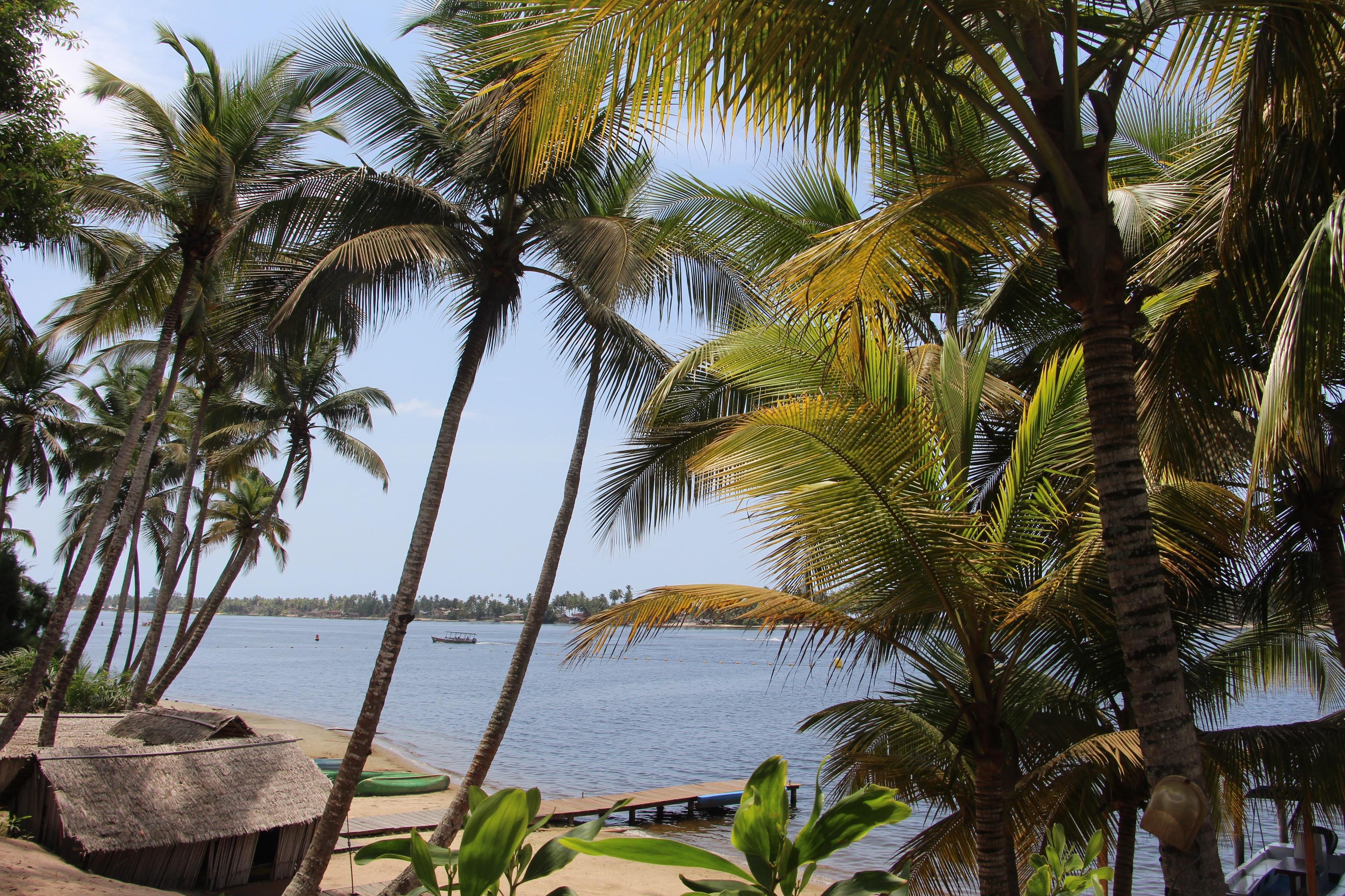 IMG 4546 - Bénévolat et Tourisme Solidaire en Côte d'Ivoire : l'expérience de Sofia