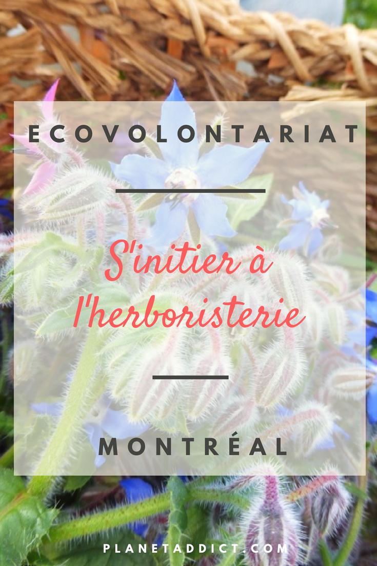 Pinterest Herbosterie - Écovolontariat : S'initier à l'herboristerie