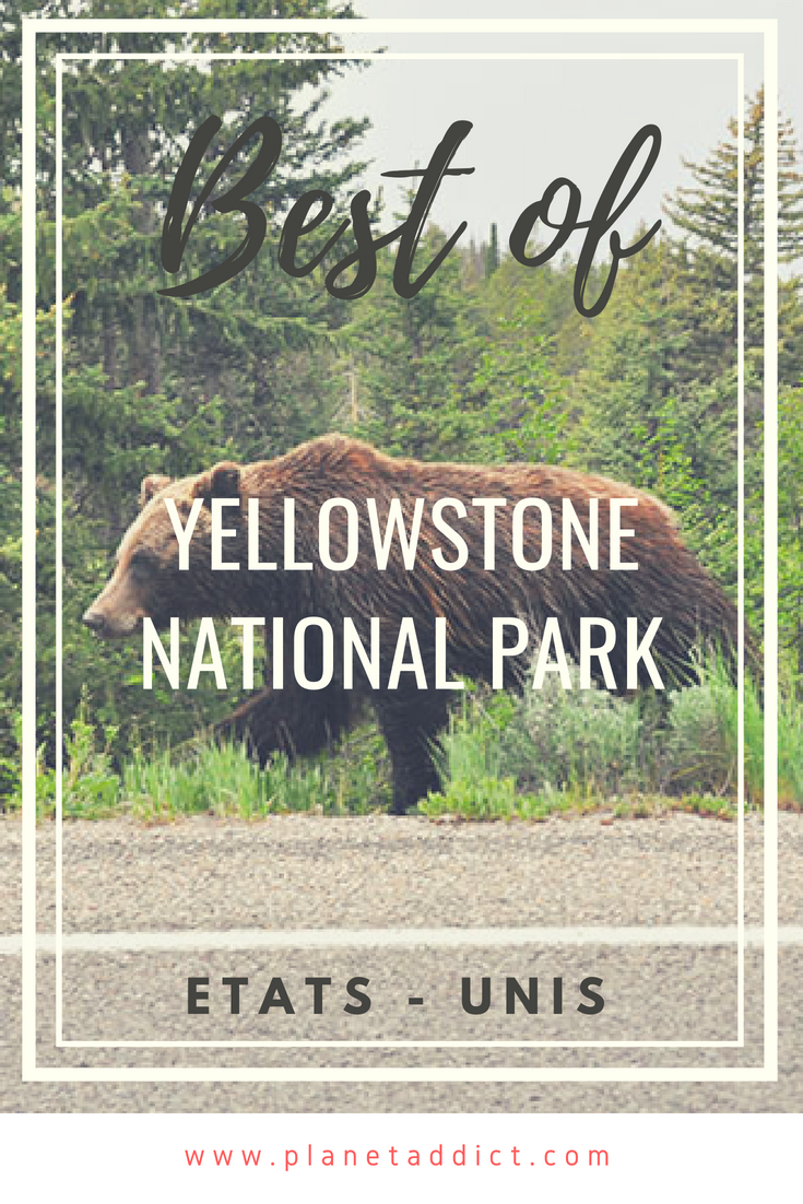 Pinterest Yellowstone - Best of Yellowstone National Park : Geyser, bisons et grizzli !