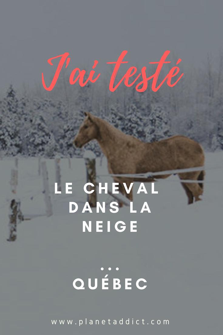 Pinterest cheval neige canada - J'ai testé : faire du cheval dans la neige au Québec !