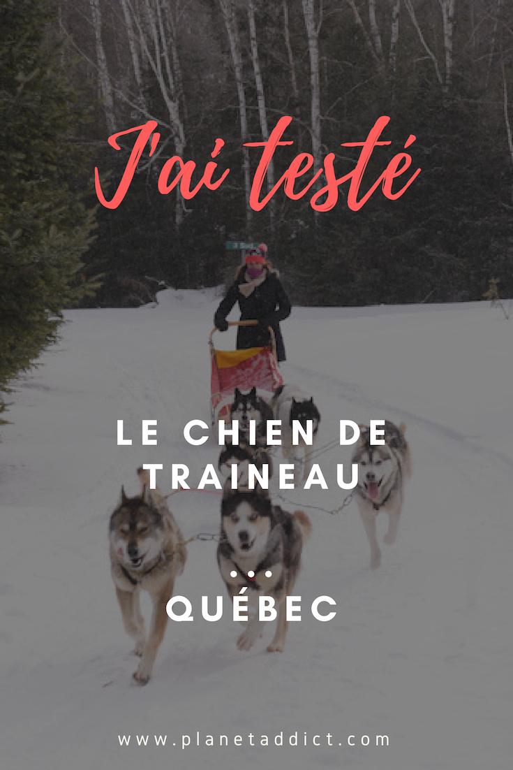 Pinterest chien de traineau canada - J'ai testé : Chien de traîneau dans les Laurentides